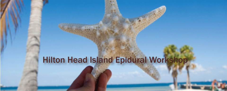 Hilton Head Epidural Workshop 2020: Combine Meetings for 28 Credits!